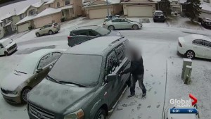Calgary winter enthusiasts loving cold weather, fresh snow; but so are car thieves